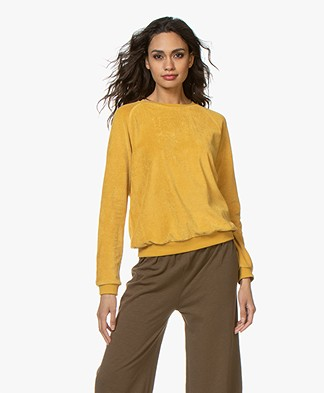 BY-BAR Teddy Velvet Sweater - Honey Bee