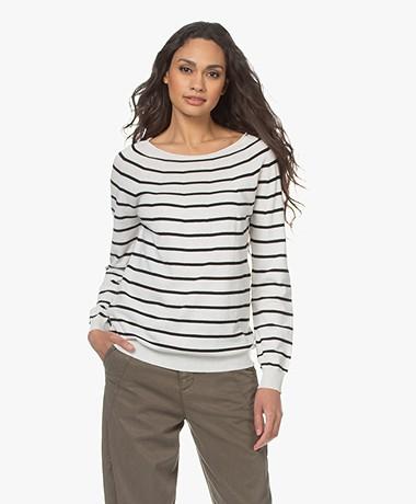 no man's land Striped Cotton Sweater - Ivory/Black