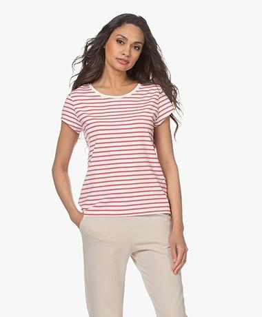 no man's land Striped Viscose Blend T-Shirt - Flamingo