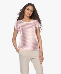 no man's land Gestreept Viscosemix T-shirt - Flamingo