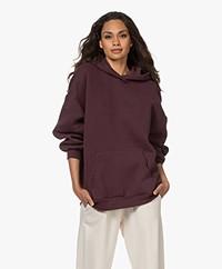 American Vintage Ikatown Cotton Blend Hooded Sweater - Aubergine