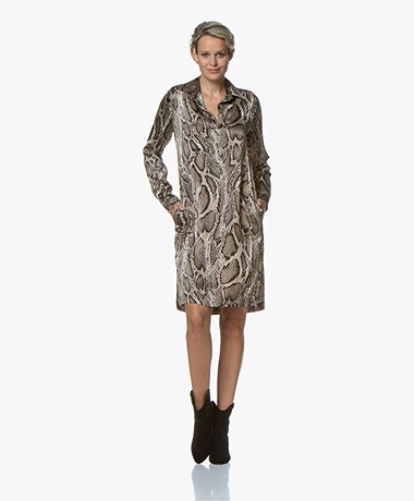 LaSalle Satin Snake Print Tunic Dress - Beige