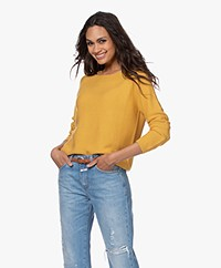 indi & cold Seamless Cotton Sweater - Oro