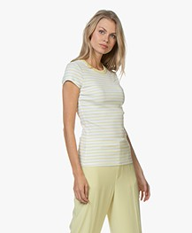 Filippa K Fine Rib Striped T-shirt - Wax/White