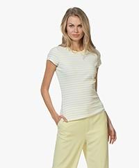 Filippa K Fine Rib Striped T-shirt - Wax/Wit