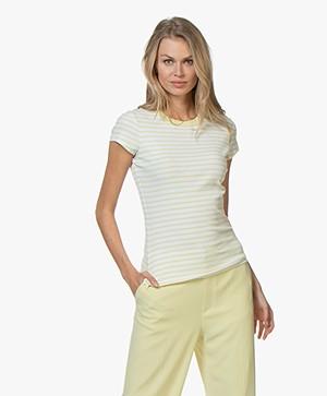 Filippa K Fine Rib Striped T-shirt - Wax/White
