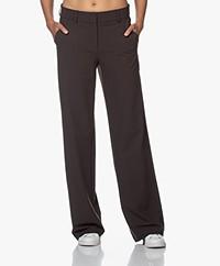 Josephine & Co Jodi Straight-leg Travel Jersey Pants - Brown
