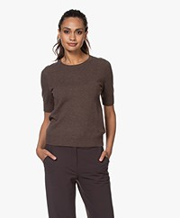 Repeat Short Sleeve Cashmere Pullover - Brown