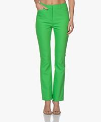 Kyra & Ko Inge Bootcut Pants - Green
