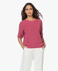 Belluna Chili Cotton Short Sleeve Sweater - Framboise