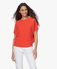 no man's land Cotton Short Sleeve Sweater - Paprika