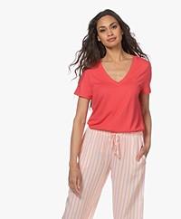 HANRO Modal Blend V-neck T-shirt - Geranium