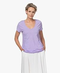 Drykorn Avivi Slub Jersey T-shirt - Purple