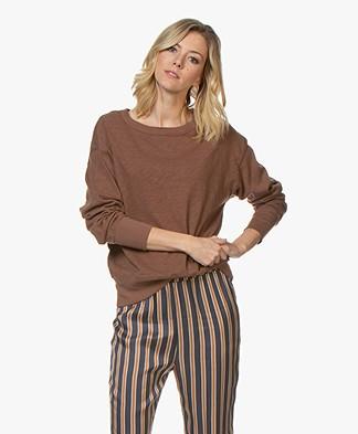 American Vintage Sonoma Katoenen Sweatshirt - Terre