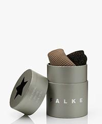FALKE Shiny Star Box 2-pack Lurex Rib Socks - Black/Café Latte
