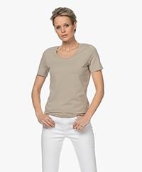 Repeat Katoenen Basis Ronde Hals T-shirt - Pepper