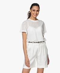 IRO Kadina Burn-out Striped T-shirt - Off-white