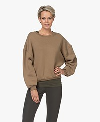 American Vintage Ikatown Katoenmix Sweatshirt - Herisson