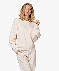 Closed Organic Cotton Sweater - Rose Quartz