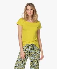 Kyra & Ko Dedina Viscose T-shirt - Lime Green