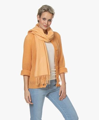 Filippa K Cashmere Blend Sjaal - Pale Orange