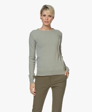 extreme cashmere N°41 Body Basic Cashmere Trui - Bean