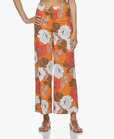 Kyra & Ko Evy Cropped Printed Pants - Orange