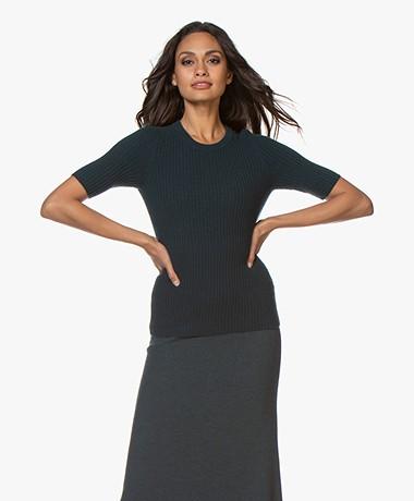 Repeat Cashmere Rib Short Sleeve Sweater - Algae