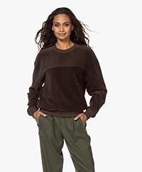 Closed Corduroy Jersey Sweatshirt - Dark Lava