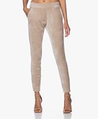 Woman by Earn Bobby Velvet Jersey Pants - Sand
