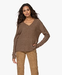 Josephine & Co Joris Alpaca Blend V-neck Sweater - Brown