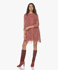 ba&sh Grace Pleated Chiffon Dress with Print - Pink Rose