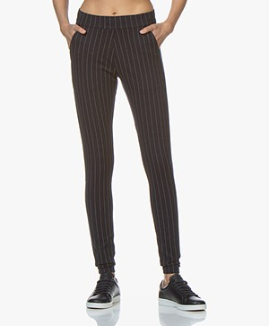 Woman by Earn Bobby Ponte Jersey Pinstripe Pants - Navy Vari