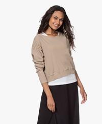 American Vintage Ixikiss Rib Cotton Sweatshirt - Vintage Amaretto