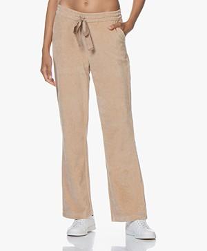 Josephine & Co Gilles Jersey Rib Velvet Pants - Sand