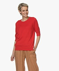 Repeat Cotton Blend Mid Sleeve Sweater - Red