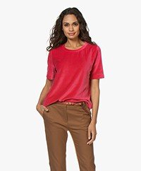 Closed Nicky Velvet Jersey T-shirt - Ruby