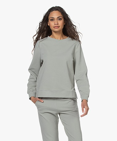 no man's land Cotton French Terry Sweater - Sage