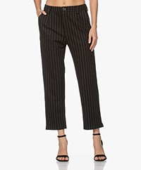 indi & cold Pinstripe Heavy Jersey Pants - Marengo