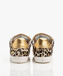 Zadig & Voltaire Leo Wild Sneakers - Multicolor