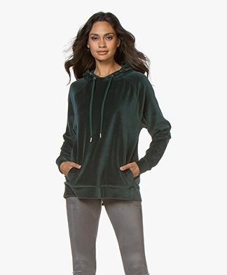 Drykorn Emina Velvet Hooded Sweater  - Dark Green
