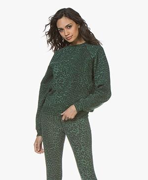 Ragdoll LA Distressed Luipaard Print Sweatshirt - Groen