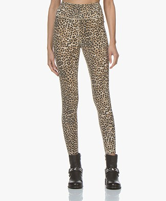 Ragdoll LA Leopard Print Leggings - Brown