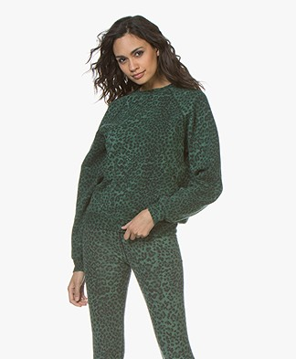 Ragdoll LA Distressed Leopard Print Sweatshirt - Green
