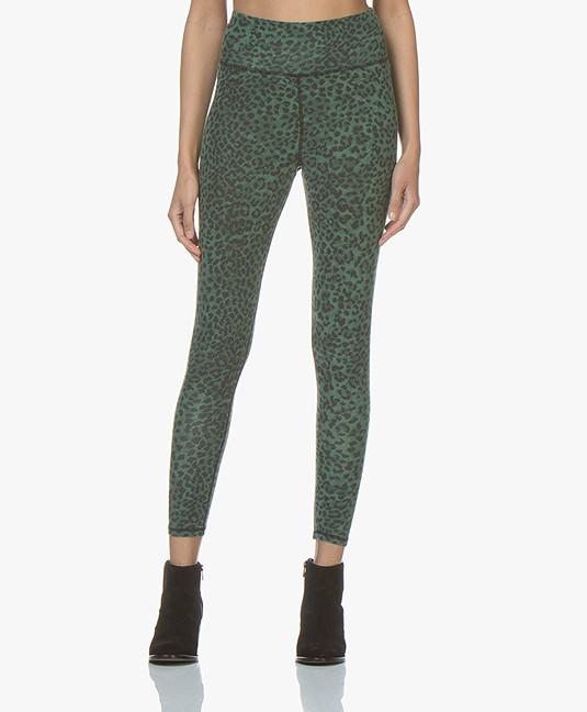 429ee93c5dd Ragdoll LA Leopard Print Leggings - Green - leopard leggings leopard  s102glxs