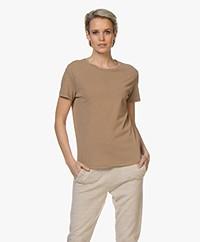 American Vintage Vegiflower Organic Cotton T-shirt - Camel