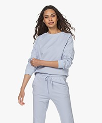 no man's land Cotton French Terry Sweater - Pale Blue