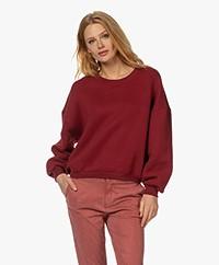 American Vintage Ikatown Katoenmix Sweatshirt - Baai