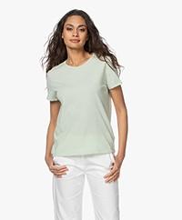 American Vintage Vegiflower Organic Cotton T-shirt - Almond Green