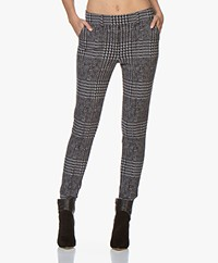 Josephine & Co Aurel Jacquard Jersey Pants - Navy Check